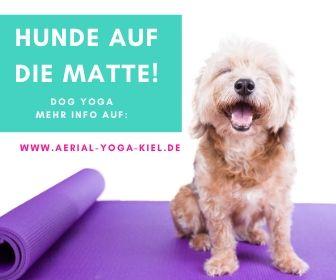 Tier Yoga